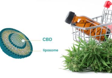 CBD Liposome oil